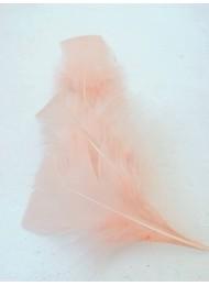 Декорация - пера опушена праскова лукс оформени пакет 10 бр