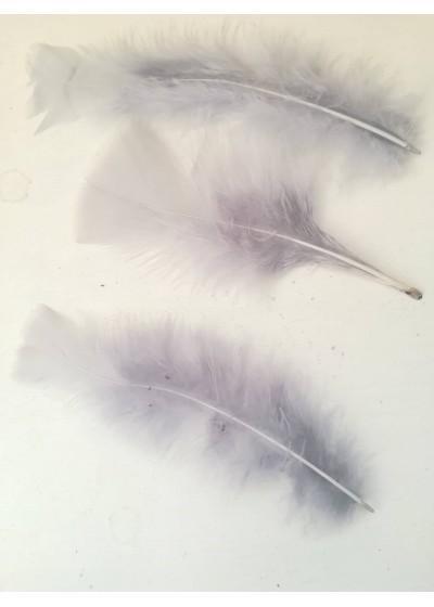 Декорация - пера цвят сиво лукс оформени пакет 10 бр