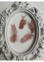 Декорация - Пера цвят Пепел от роза пакет 10 бр