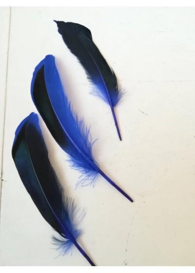 Пера за дрехи и декорация - двуцветни лукс черно и кралско синьо пакет 10 броя