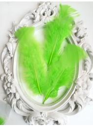Декорация - Пера ябълково зелено лукс оформени пакет 10 бр