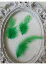 Декорация - Пера тревисто зелено пакет 10 бр