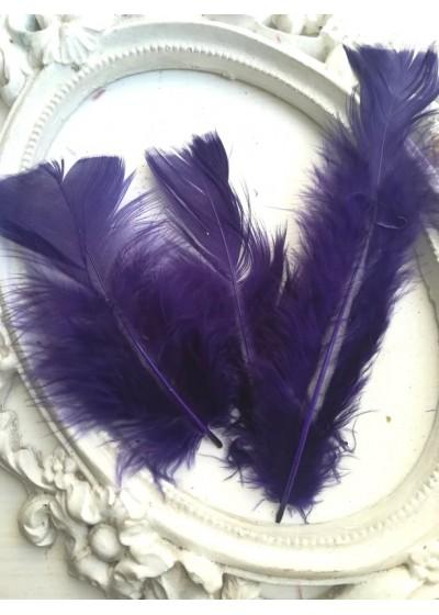 Декорация - Пера тъмно лилаво мастило лукс оформени пакет 10 бр