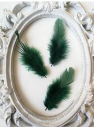Декорация - Пера тъмно зелено пакет 10 бр