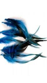 Цветни пера лукс за дрехи и бижута